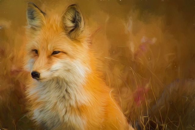 Red Fox Fuchs Painting Photo Painting Oil Painting